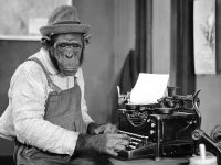 chimpanzee-at-typewriter
